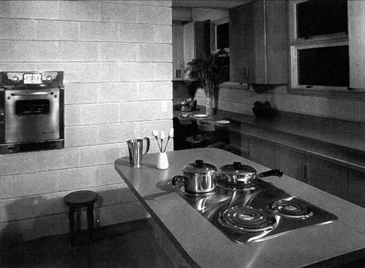 Original Van Tamelen House Kitchen